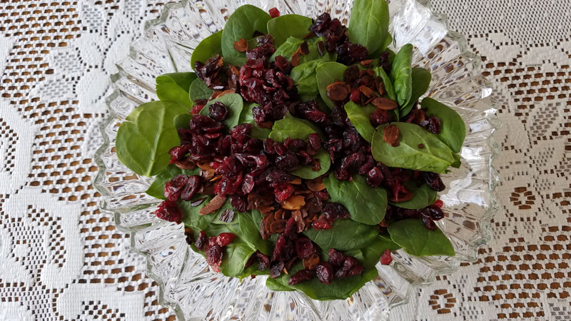 Spinach Cranberry Salad - Hopelessly Hopeful Blog